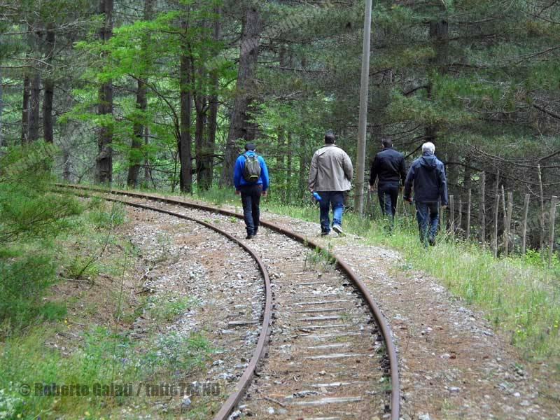 FC-FCL-Escursione_FerroviaSilana-SanNicolaSilvanaMansio-2015-06-21-RobertoGalati_2_tuttoTRENO_wwwduegieditriceit