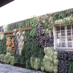 FondazioneFS-MuseoFerroviarioPietrarsa-Pietrarsa--2015-10-04-BertagninA_212