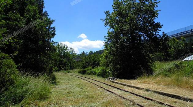 Ferrovia Silana: proseguono i lavori di disboscamento