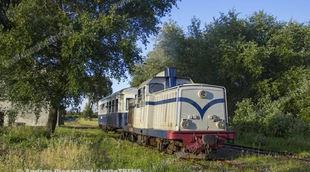 Trenino Verde 2016