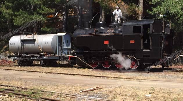 Ferrovie della Calabria: FCL 353 sulla ferrovia della Sila